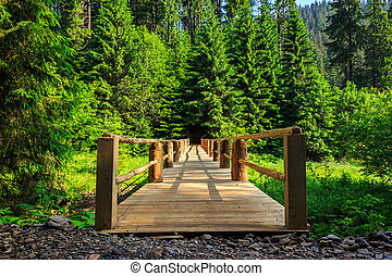 wooden bridge stretching into the depths of the forest...