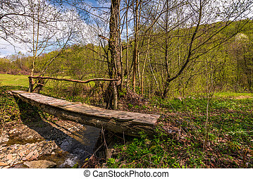 wooden bridge through forest stream. beautiful nature...