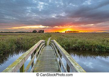 Wooden bridge towards sunset