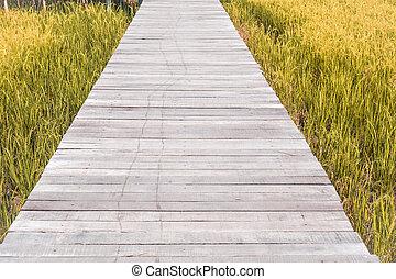 wooden bridge walk way