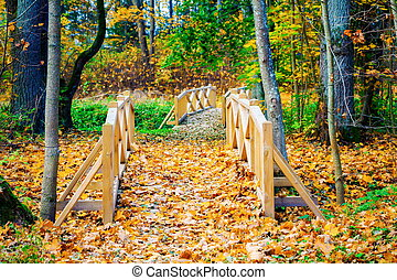 Wooden bridge with colorful autumn leaves