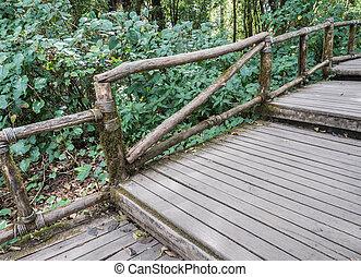 wooden bridzs, trail., természet