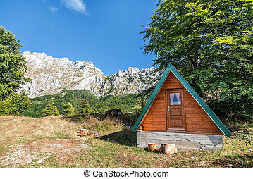 Wooden Cabin in the woods in autumn