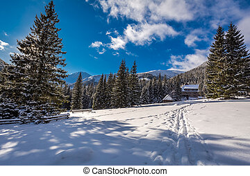 Wooden cabin in winter in the mountains at sunrise, Tatras