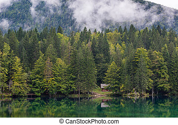 Wooden cabin surrounded with pine forest at lake shore.