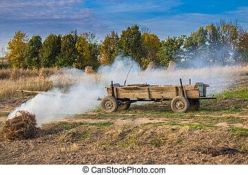 wooden cart in a field