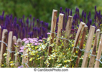 Wooden chestnut fence in spring