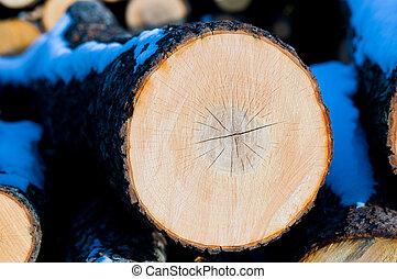 Wooden circle