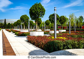 Wooden, circular, brown benches around young standard trees growing in large round containers, placed between bushes.