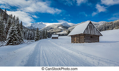 Wooden cottages and snowy road in winter, Tatra Mountains