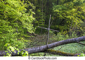 wooden cross in the forest