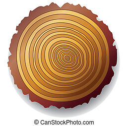 wooden cross-section of a tree - vector wooden cross-section...