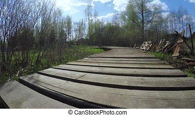 Wooden dais through swamp