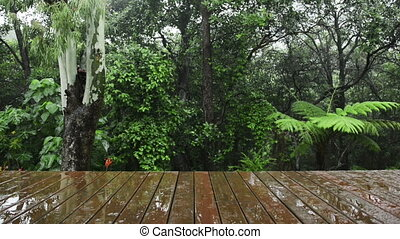 Wooden Decking Rainforest View