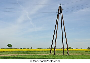 Wooden electric pillar in the