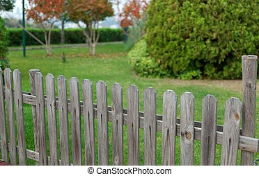 wooden fance and background from green garden