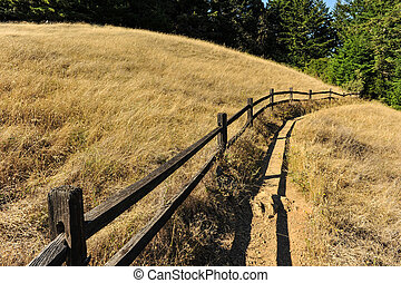 Wooden fence along a hiking trail near field - A hiking...