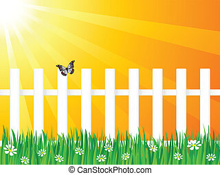 wooden fence and butterfly 4