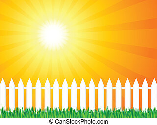 wooden fence and grass 4