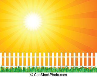 wooden fence and grass 6