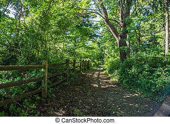 Wooden Fence And Path 2 - A landscape shot of a wooden fence...