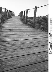 Wooden fence and walkway to beach black and white