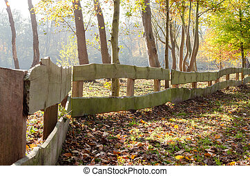Wooden fence in the autumn