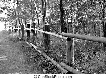 Wooden fence in the countryside.
