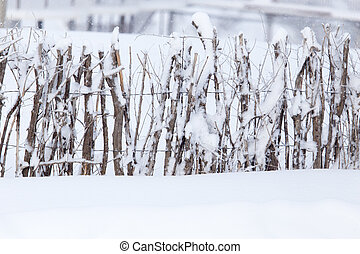 wooden fence in the snow