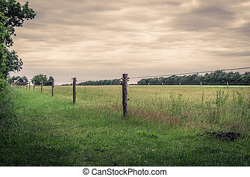Wooden fence on a green field