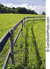 wooden fence on grassland in summer farm