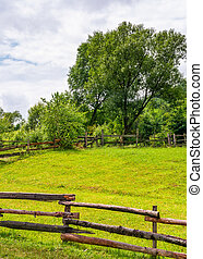 wooden fence on grassy rural field with tree. lovely...