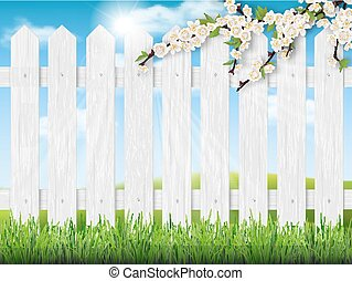 wooden fence spring tree grass - Pointed fence, lawn, ...
