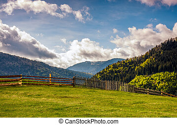 fence through the grassy meadow in mountains - wooden fence...