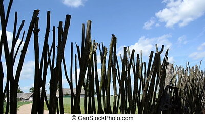 wooden fence tree branch