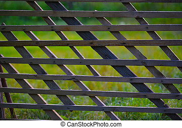 Wooden fence with green grass