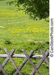 Wooden fence with meadow behind it
