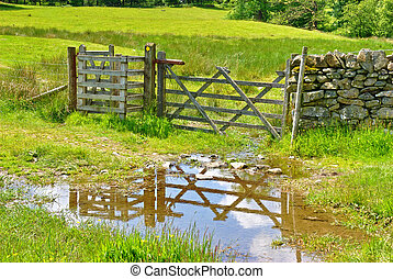 Wooden field gate reflected in puddle