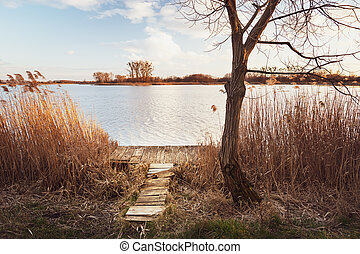 Wooden fishing platform by a tree on a quiet lake