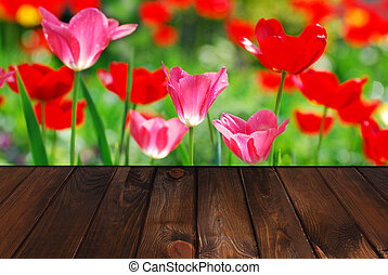 wooden floor and spring garden with tulips