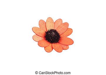 wooden flower on white background