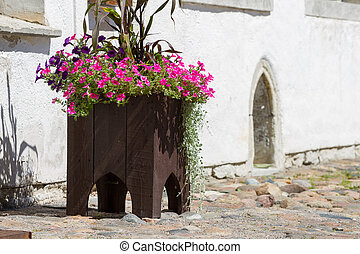 Wooden flower pot with flowers in city of Tallinn