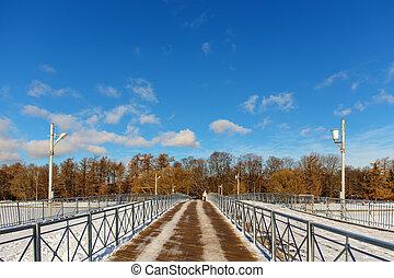 wooden foot bridge in winter park