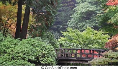 Wooden Footbridge Maple Trees Fall