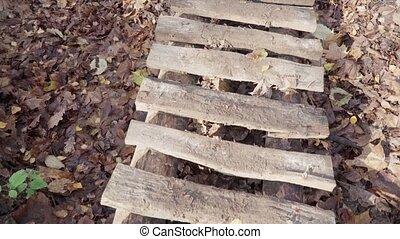 Wooden footbridge over mud and fallen leaves in autumn forest