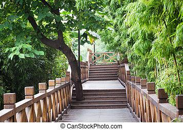 wooden footbridge throught bamboo garden - wooden footbridge...