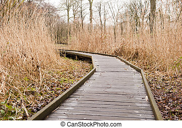 Wooden footpath through grass landscape