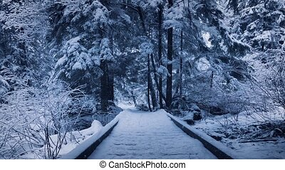 Wooden Footpath Through Park Buried In Snow - Footpath in...