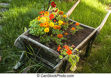 Wooden garden cart with flowers