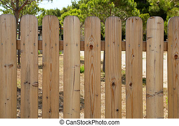 Wooden garden fence at backyard and trees in summer